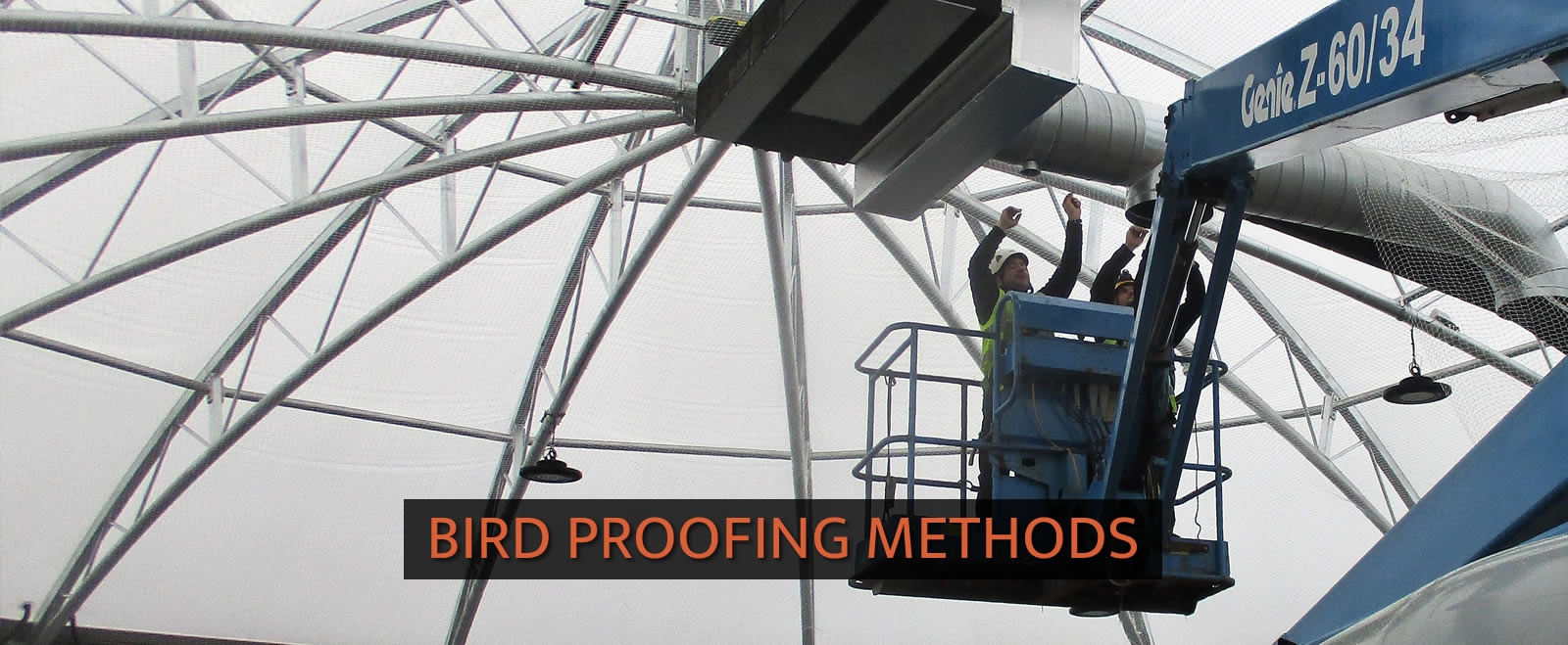 Bird Proofing Methods